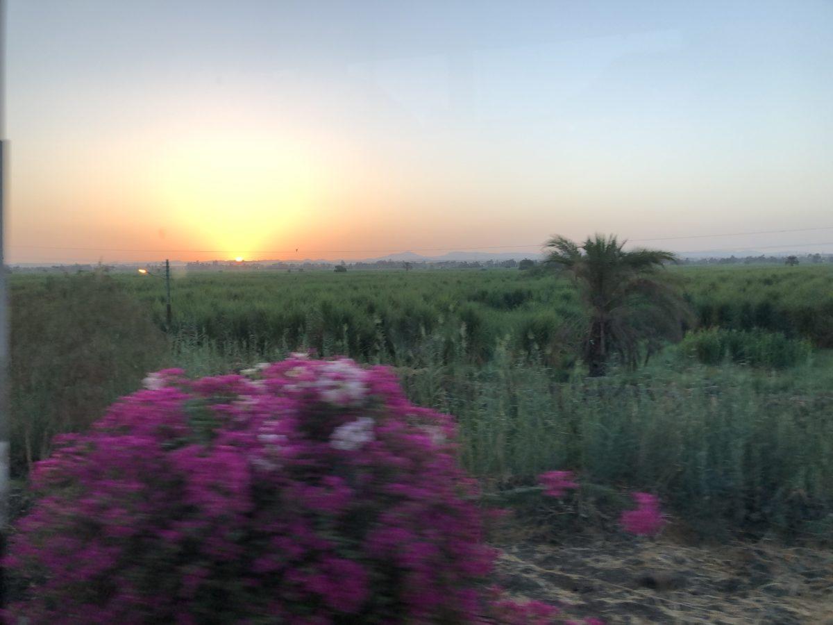 Dreaming Egypt – Tag 9